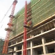 上海塔吊生产厂家