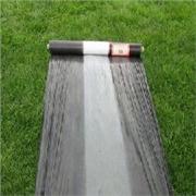 凯利丰灌浆膜供应实惠的黑白地膜_优质的黑白地膜