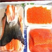 东方海洋冰鲜三文鱼尊品礼盒