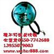 供应维尔特WSSXPWSSXP带热电偶热电阻双金属温