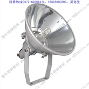 供应海牛特种照明NTC9200_NTC9200投光灯