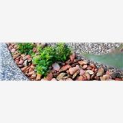 鹅卵石价格|河北石材专业加工出售