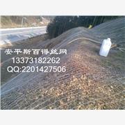 供应安平斯百得SLWSBD-3石笼网|边坡防护网|六角网