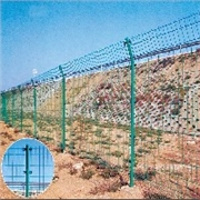 哪里买最优的双边护栏网?