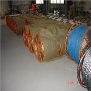 畅销的电力牵引钢丝绳哪个厂家好