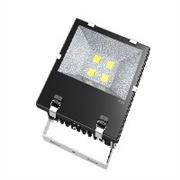 福州瑞晟电子供应全省最具有口碑的LED投光灯