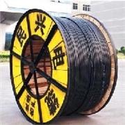 泉州专业的铜芯PVC绝缘电缆【品牌推荐】:价位合理的铜芯PVC绝缘电缆