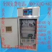 山东省最新全自动孵化设备厂家