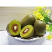 首屈一指的红心猕猴桃批发市场推荐:优惠的红心猕猴桃