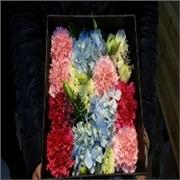 鲜花批发供应划算的鲜花——鲜花价格范围