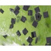 广州宇津环研LEVAPOR工艺处理纸浆污水