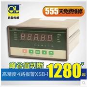 供应启励XSB-1峰谷值测量仪表 自动切换显示峰值