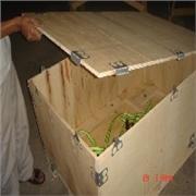 台州专业的模具专用木箱推荐:免熏蒸木箱价格
