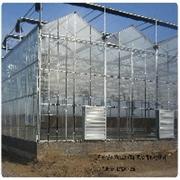 寿光禄丰农业工程出售专业的阳光板智能温室 温室建设哪里好