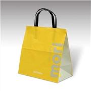 浅谈手提纸袋的应用和制作标准