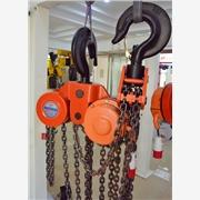 供应怀鸽国标30吨电动葫芦国标30吨电动葫芦