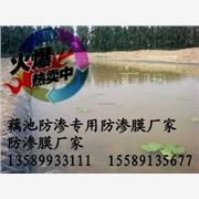 供应HDPE藕池防渗膜厂家