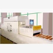 供应隆拓定制水果片干燥杀菌设备