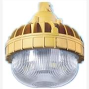 供应IRE(弗朗防爆)BRE8637(20W-40W)LED防爆节能灯