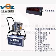 供应沃众衡器XP3901-10P营口电子吊秤产品性能技术参数信息