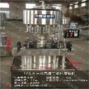 GDP-12全自动等液位灌装机