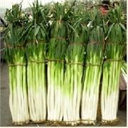 章丘市高山-最知名的章丘大葱,绿色食品,供您享用。