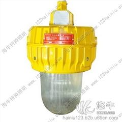 BFC8140-100WBFC8140内场防爆灯