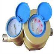 供应胜利石油仪表最优惠的双功能高压水表