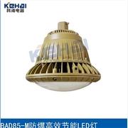 供应科海电器BAD85-M防爆高效节能灯