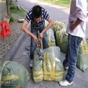 上海哪里有信誉好的行李包裹托运
