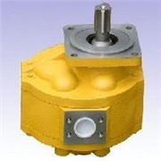 kcb齿轮油泵,山东耐用的铲车齿轮油泵供应