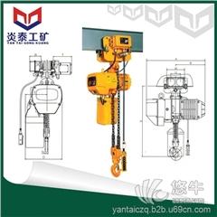 供应炎泰WBH-05002D5吨双回链环链电动葫芦