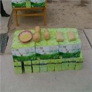 潍坊物超所值的纯天然绿色蔬菜批发供应:纯天然绿色食品代理