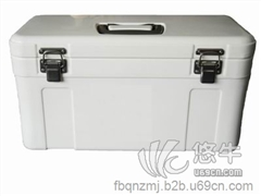 泡沫保温箱 产品汇 供应供应家用饭菜保温箱模具