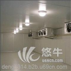 供应瑞雪RXLD200冷冻冷藏库