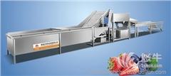 供应和和HH-L诸城市和和机械蔬菜清洗去皮机