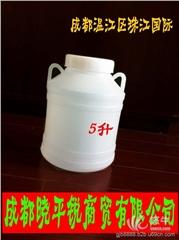 供应5升塑料桶新原料制作食品级化工桶