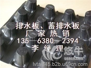 供应绿泰0.8cm-6.0cm车库顶板排水板 hdpe排水板