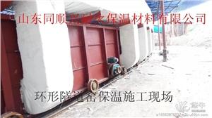 湖北烧红砖隧道窑节能保温模块
