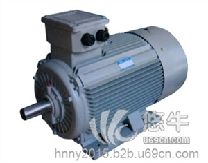 供应南洋防爆电机YE3超高效电动机YE3超高效电动机