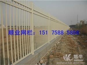 供应顺业网栏锌钢护栏铁艺护栏、各种护栏