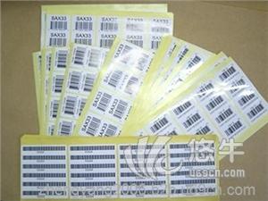 供应张装不干胶标签专业生产定制