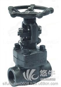 锻钢阀门 产品汇 供应思氟阀门Z11H-16C丝口锻钢闸阀Z11H-16C